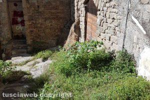 Viterbo - Via Delle Mole invasa dalle erbacce
