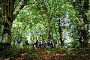 Bassano Romano - Un'escursione alla faggeta