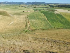 Tarquinia - Valle del Mignone