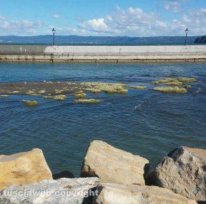 Marta - L'imbocco del porto
