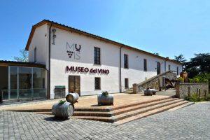 Il museo del vino di Castiglione in Teverina