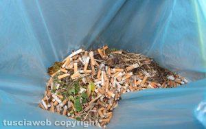 Viterbo - I mozziconi di sigaretta raccolti in via Carletti