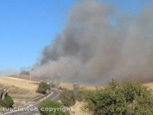 Monte Romano - L'incendio al bosco della Turchina
