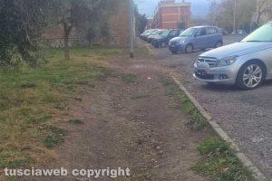Viterbo - Via Corrado Alvaro nel degrado