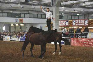 Sport - Equitazione - Filippo Nassi