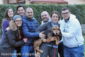 Tuscania - Il segugio salvato - Foto di Sabino Buzi