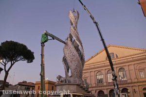 Viterbo - Fiore del cielo a piazza del Teatro