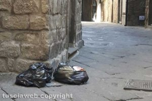 Viterbo - Sacchi di rifiuti lungo via San Pellegrino