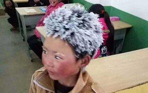 """Wang Manfu - """"Fiocco di neve""""."""