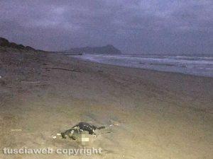 Sabaudia - Lo scheletro ritrovato sulla spiaggia