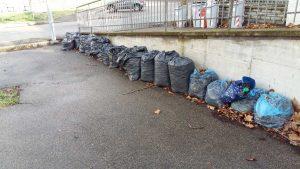Viterbo - Via della Grotticella - Sacchi di foglie insaccate da mesi