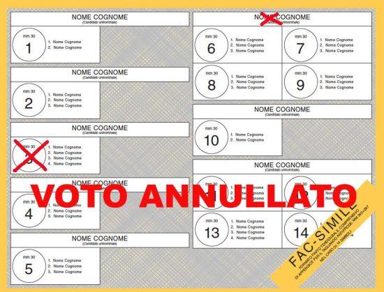 Elezioni politiche esempio 5