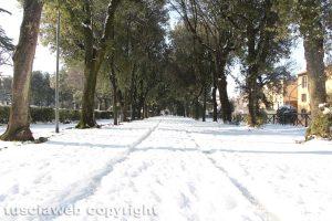 Viterbo - Neve a pratogiardino Lucio Battisti