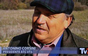 Antonino Corsini