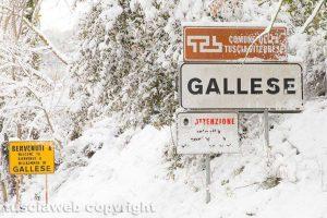 Gallese - Neve - Gallese innevata