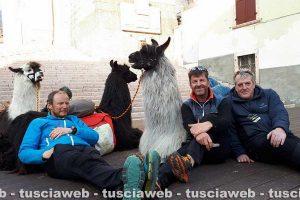 Trekking - Il viaggio di Walther Mair, Thomas Burger e Thomas Mohr