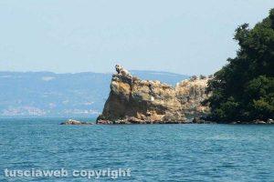 Capodimonte - L'isola Bisentina