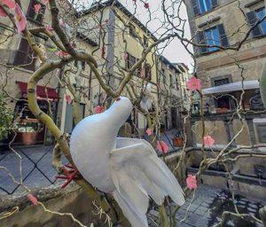 Bolsena - Piazza S. Rocco - L'albero di Pasqua