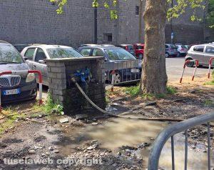 Viterbo - La perdita di acqua di fronte a pratogiardino Lucio Battisti