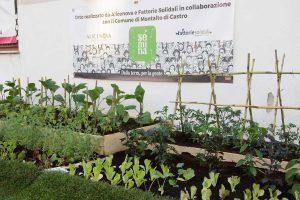 Montalto - Un momento della sagra dell'asparago verde