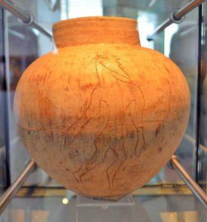 Farnese - Un reperto del museo