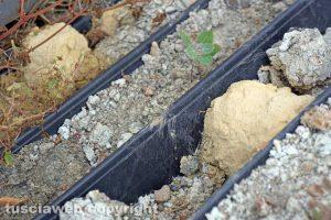 Vetralla-Cinelli - I sondaggi del 2006 abbandonati nella discarica