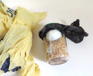 Vetralla - Carabinieri - Droga nascosta nel sottobosco