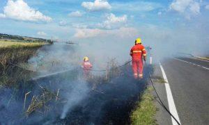 Tarquinia - Incendio sulla sp Lupo Cerrino - Intervento dell'Aeopc