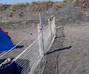 Spiaggia a Montalto