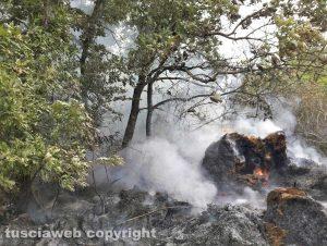 Viterbo - Incendio di bosco e sterpaglie a Fastello