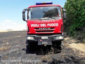Incendio sterpaglie - L'intervento dei vigili del fuoco