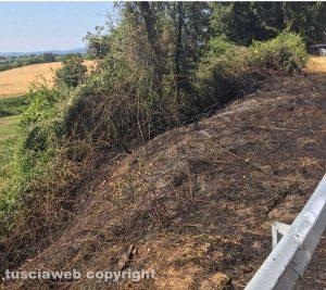 Lubriano - L'incendio in località Castiglione