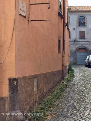 Viterbo - Erbacce in via delle Mura