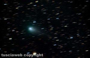 La cometa Giacobini Zinner