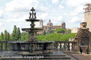 Viterbo - La fontana di palazzo dei Priori
