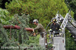 Vigili del fuoco al lavoro - Foto di repertorio