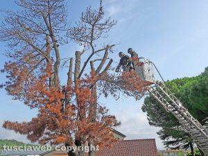 Montefiascone - L'intervento dei vigili del fuoco