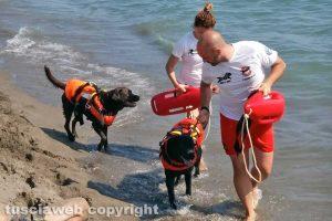Montalto di Castro - Prove di salvataggio per i cani bagnino