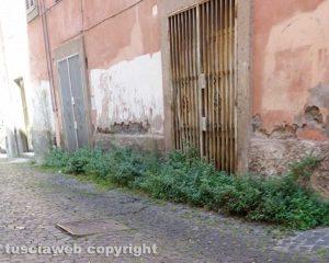 Viterbo - Il degrado in via Cieca
