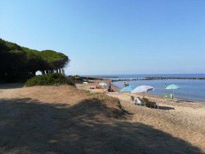 Tarquinia - La pineta e la spiaggia di San Giorgio