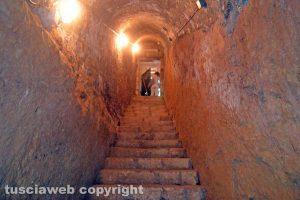 Tarquinia - La tomba degli Scudi