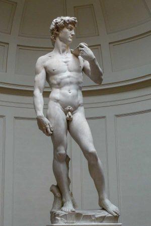 Il David di Michelngelo