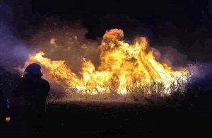 Tarquinia - L'incendio a Montericcio