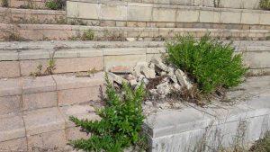 Tarquinia - Degrado nell'area Bucone