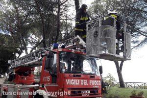 Montefiascone - L'intervento in località Cappuccini