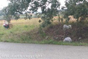 Civita Castellana - La spazzatura lungo via Falerina