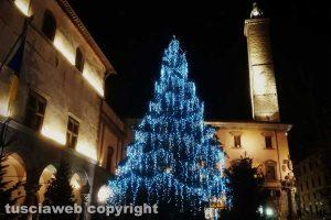 Viterbo - L'albero di Natale in piazza del Comune
