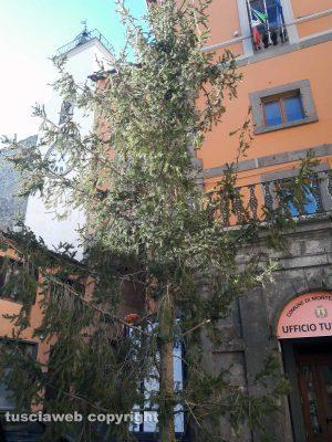 Montefiascone - L'albero di Natale