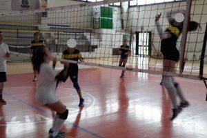 Sport - Il trofeo Città di Viterbo