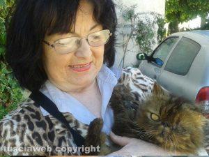 Poggino - Maria Ciucci con uno dei gatti della colonia felina